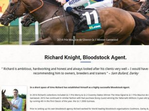 Bloodstock Agent, website